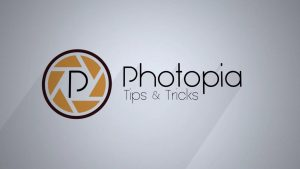 photopia-director-crack free